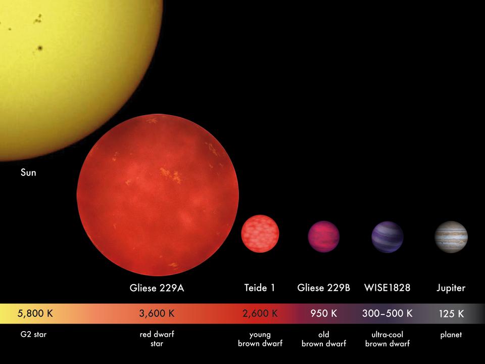 Comparaison entre le Soleil (type G2 V), la naine rouge Gliese 229A (type M1)3, les naines brunes Teide 1 (type M8), Gliese 229B (type T)3, et WISE 1828+2650 (type Y), et Jupiter (planète géante gazeuse).